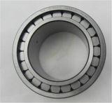 Rolamentos de rolos cilíndricos de complemento completo de linha dupla para bomba de óleo Nnf 5020