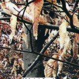 Kingtop 1m Film wdf118-1 van de Druk van de Overdracht van het Water van het Ontwerp van de Camouflage van de Breedte