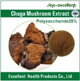 Выдержка гриба Chaga/выдержка Inonotus Obliquus
