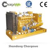 assurance globale du commerce de garantie de prix bas de groupe électrogène du gaz 50kw naturel