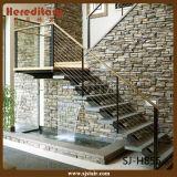 Acero inoxidable y escalera recta de madera (SJ-X1082) del diseño elegante