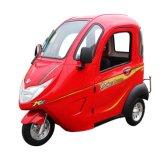 Heißer Bewegungselektrischer Roller des Verkaufs-1000W mit Rad drei für ältere Person
