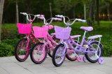 Neues Modell scherzt Fahrrad Sz-002 der Qualitäts