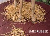 La sicurezza scherza le stuoie di gomma del pavimento del campo da giuoco