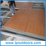 Tent di lusso con Laminated Wood Flooring