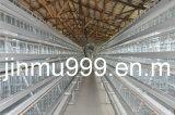 (9LDC-42250-22) Cage de poulet de bâti de matériel de volaille pour le poulailler