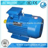 Elektrischer Motor Y3 für Ausschnitt-Maschine mit kupfernen Ringen