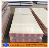 Pre-Coated Gi Sheet/PPGI