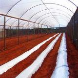 Дом экономичного тоннеля земледелия зеленая для Vegetable растущий - Хелен