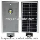 Precio solar directo del alumbrado público de la fábrica IP65 Bridgelux 6W LED