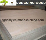 Buen embalaje lámina de madera contrachapada de la calidad total del álamo Core en Venta