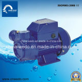 Bomba elétrica da agua potável da fase monofásica da série do LQ para a polegada Home do uso 1 (0.37kw/0.55kw/0.75kw)