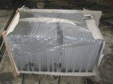 G654 목욕탕 부엌을%s 회색 화강암 지면 돌 도와
