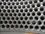 La alta calidad forjó la prensa de la pelotilla del acero inoxidable muere