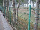 Galv。 またはPVC塀のための上塗を施してある二重ねじれの有刺鉄線