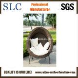 Presidenza dell'uovo/salotto dell'uovo/salotto uovo del rattan/salotto di Sun di vimini (SC-FT020)
