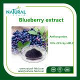 100%のHPLC著自然なプラントエキスのブルーベリーのエキス25%のアントシアニジン粉
