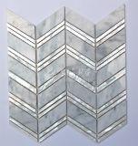 Shell de Newsales y mosaico de agua dulce del mármol