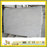 Ambiti di provenienza di marmo bianchi della Cina per il disegno della stanza da bagno