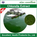 100%の自然なクロレラの粉