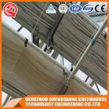 Estufa da película do PE do frame de aço de China com sistema de ventilação