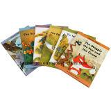 Livre d'histoire du livre À couverture dure des enfants d'impression de Cmyk (OEM-HC016)