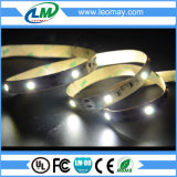 5050 bianchi ed indicatore luminoso di striscia flessibile bianco caldo del LED