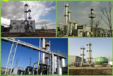 Biogas che aggiorna sistema/assorbimento chimico/il sistema decarburazione del biogas