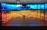comitato dell'interno di colore completo P3.91 LED di 500*1000mm per scopo locativo