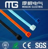 Nylonkabelbinder mit Kleinsatz-Cer RoHS Smeta
