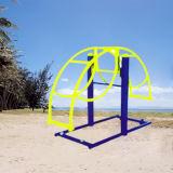 Forma fisica esterna di Excersize del movimento alternato verticale standard della strumentazione