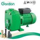 Pompe profonde auto-amorçante d'eau de puits de syndicat de prix ferme avec l'indicateur de pression (FCP)