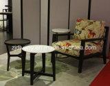 현대 가구 백색 대리석 커피용 탁자 나무로 되는 탁자 (T-85A+B+C)