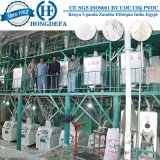 Ligne de production complète de 50t / 24h Machine de farine de blé (HDF)
