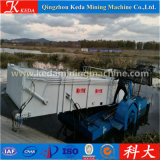 Cañas del agua de Qingzhou que cortan la nave