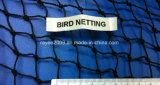 バージンの農業のナイロン紫外線扱われた反鳥のネット