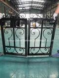 Frontière de sécurité décorative neuve de grille de fer travaillé avec la qualité