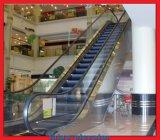 Qualitäts-niedrige Kosten-Wohnrolltreppe