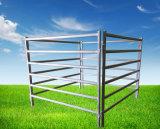 Panneaux ronds portatifs de bétail de pipe pour des bétail