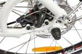 연장자를 위한 낮은 단계 프레임 전기 자전거