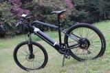 Bici elettriche di stile della montagna con il disegno di modo per il servizio russo