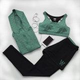 女性の柔らかく細い圧縮のスパンデックスの体操の試しのトラックスーツのヨガの衣服