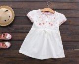 4 die Farben-Kind-Mädchen-Form-Sommer umsäumt normales einfaches Kleid