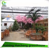 Hot Sale PC Sheet Green House for Restaurant