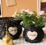 (BC-WF1017) Чисто Handmade естественная Wicker корзина цветка