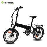 scooter électrique de 48V 20ah et bicyclette électrique de ville verte électrique du vélo 450W