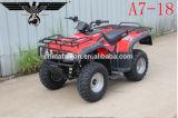 A7-18 Búfalo 250cc Fast Motos ATV Quad Scooter con Ce