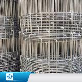 Type plongé chaud de haute résistance frontière de sécurité fixe de galvanisation de fil d'acier de cerfs communs de frontière de sécurité de noeud de ferme