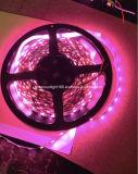 El voltaje de la tira del LED es ambiente seguro y verde de 12V