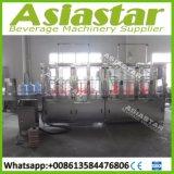 Plante aquatique minérale automatique de 1200bph 20L avec le prix usine